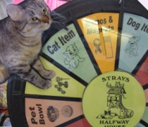 Me spinning the wheel to win a prize!