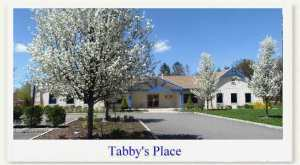 Tabby's Place